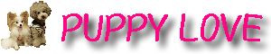 【東京の犬のしつけ教室】パピーラブ|人気おすすめの犬の出張トレーニング・ホテル